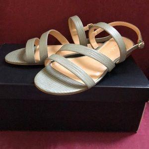 NIB Talbots sage strapping low sandals